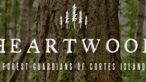 New Heartwood logo & website designed by the girls at Moosestash Films. Photo by TJ Watt.