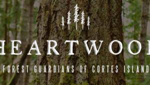 New Heartwood logo & website designed by the girls at Moosestash Films. Photo by TJ Watt.